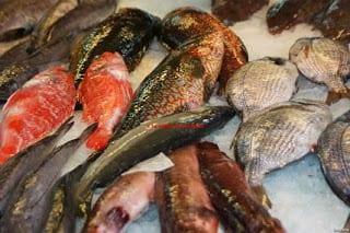 Pescado Y Mariscos De Galicia La Cocina De Mi Abuelo